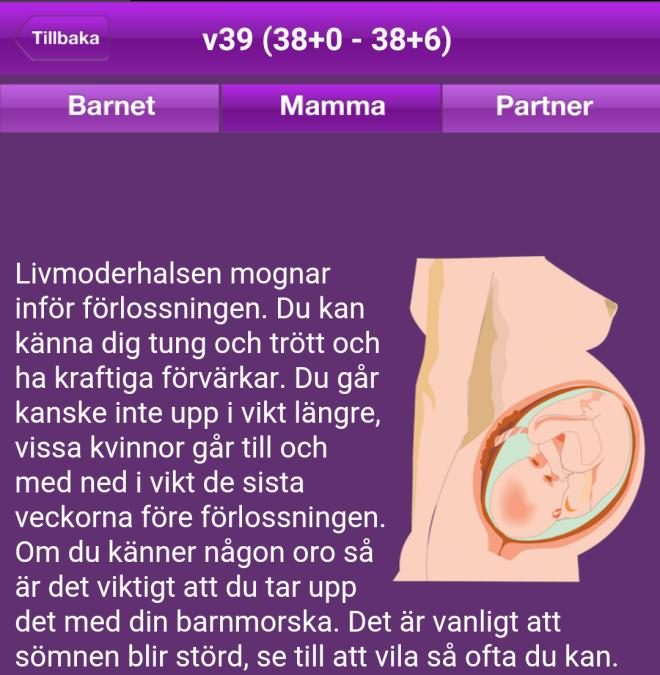v39det