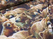 björntyg