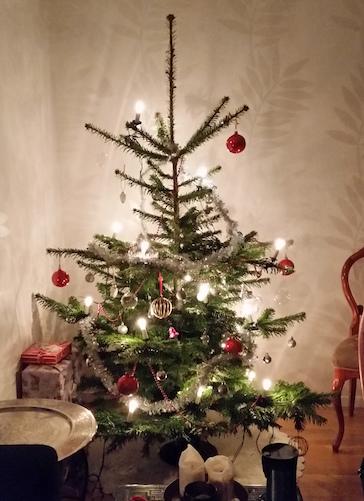 julgranen har återhämtat sig